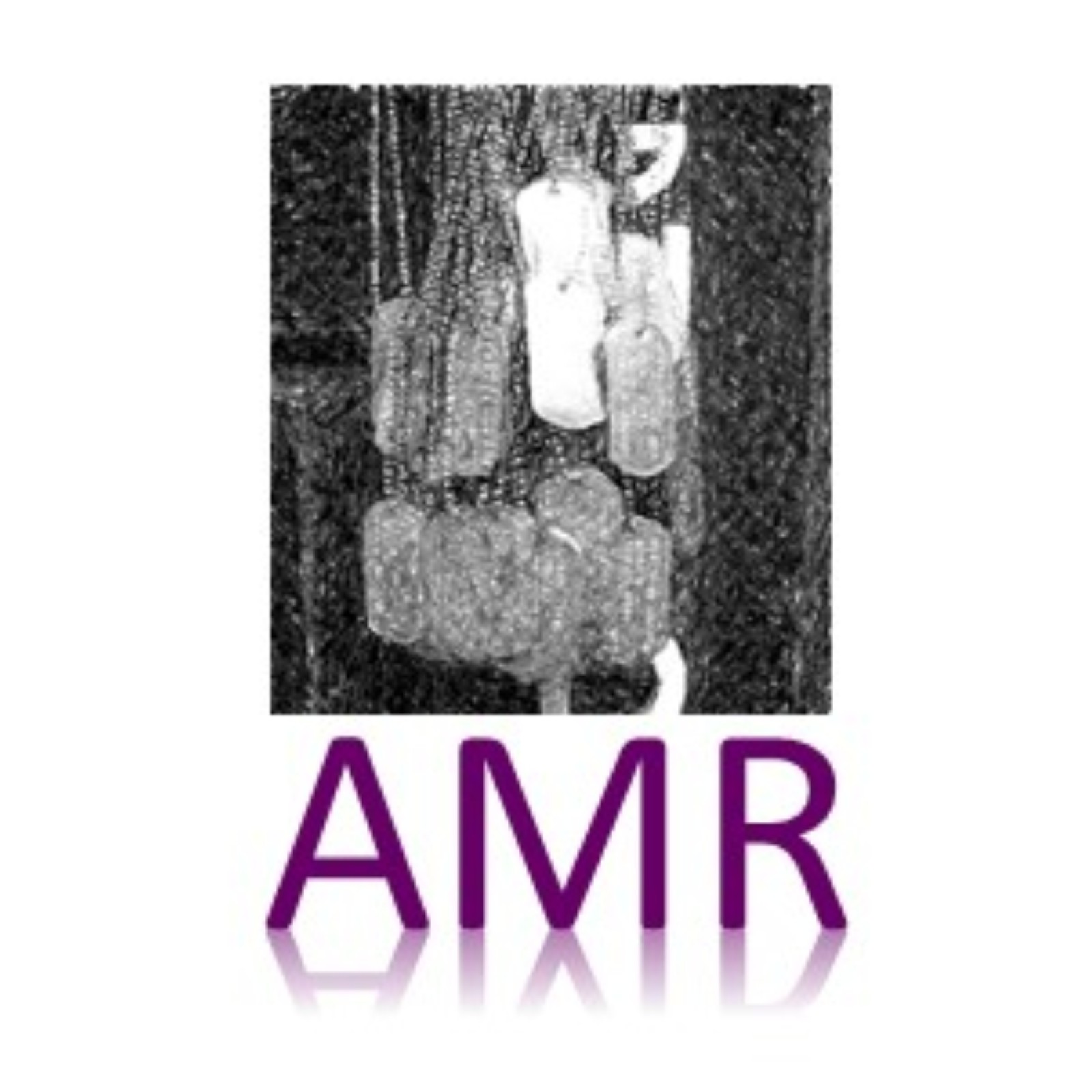ALL MARINE RADIO - Podcasts